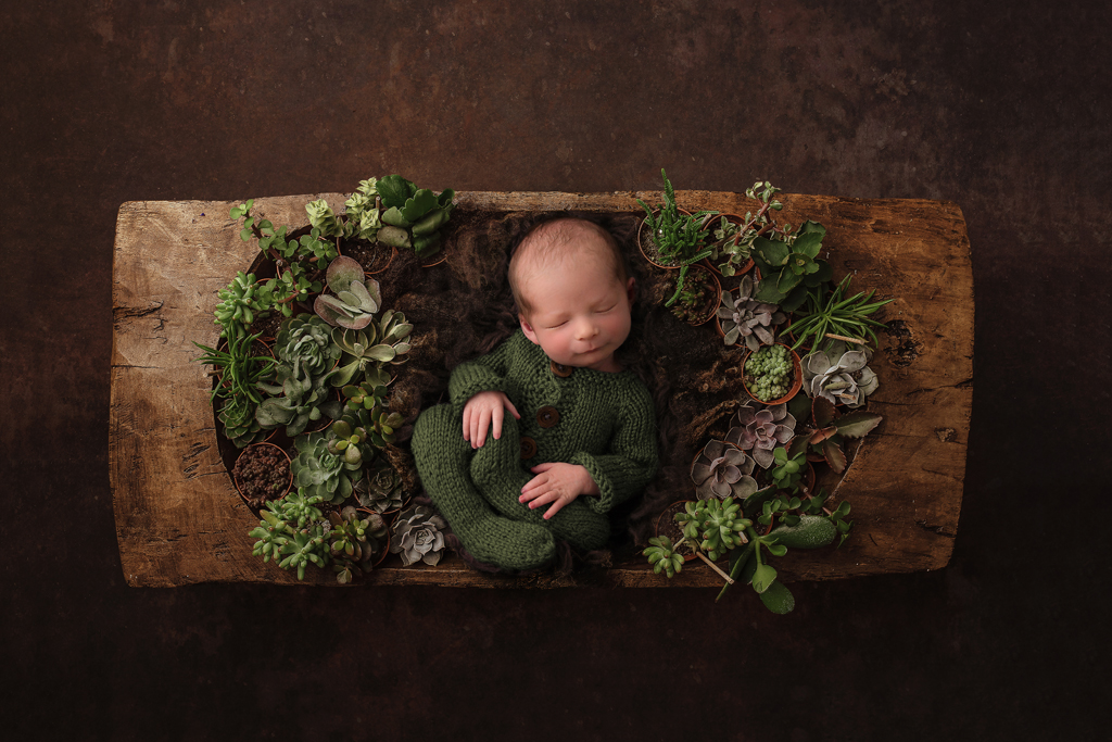 palmerston-newborn-photographer-6
